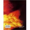 NUOVO DETTO E FATTO (IL)   EDIZIONE MISTA FONOLOGIA+CD ROM+SINTASSI+LINGUA+PROVA INGR.+TEST GR.+ LIB