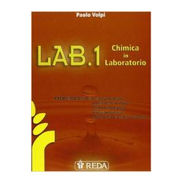 CHIMICA OGGI + CDROM (LMM LIBRO MISTO MULTIMEDIALE) SCIENZE INTEGRATE   VOLUME UNICO MULTIMEDIALE CO
