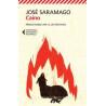 CONOSCO LA MIA LINGUA A A. MORFOLOGIA, SINTASSI, FONOLOGIA E ORTOGRAFIA Vol. 1