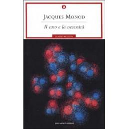 TANTUCCI (IL)   GRAMMATICA  VOL. U