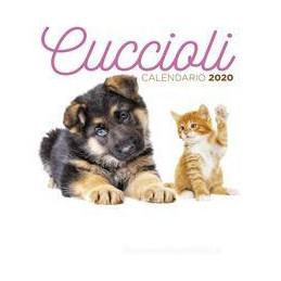ROMA E CITTà DEL VATICANO