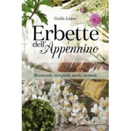 MIO PICCOLO CABARET DI SATIE. LIBRI SONORI (IL)
