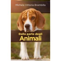 GRAMMATICA TEORIA ESERCIZI VOL.A1 (CON DVD E PROVE INGR.)+A2+B+C+D ONLINE A1 FONOL. ORTOG. MORF.; A2