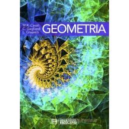 IL VIGILE URBANO - CORSO PER AGENTI E UFFICIALI DELLA POLIZIA LOCALE, MUNICIPALE E PROVINCIAL