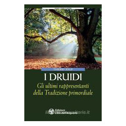 DRUIDI (I)