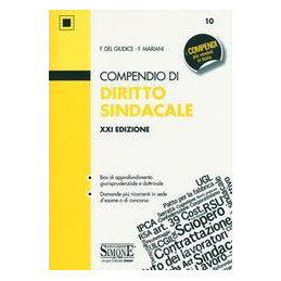 COMPENDIO DIRITTO SINDACALE