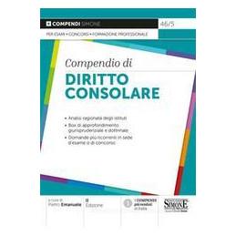 COMPENDIO DIRITTO CONSOLARE