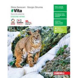 INVITO ALL`ARTE  STUDIARE CON LE MAPPE E CON LE IMMAGINI 2  Vol. 2