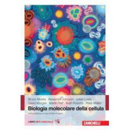 Â¿TU ESPANOL? Â¡YA ESTA! 2  Vol. 2
